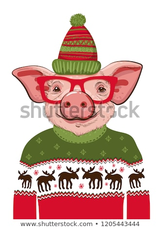 Pigs in Hats and Sweaters, New Year and Christmas Stock photo © robuart