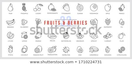 Lychee Coconut Carambola Passion Fruit Vector Stock photo © robuart