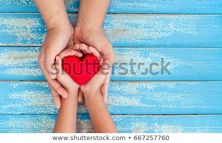 Red Valentine's heart in the hand on a blue background Stock photo © Kotenko