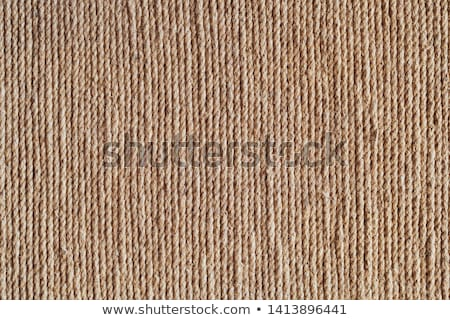 natural Rope background, rope background lines Stock photo © ivo_13
