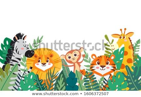 Frames wilde dieren bladeren illustratie natuur achtergrond Stockfoto © colematt