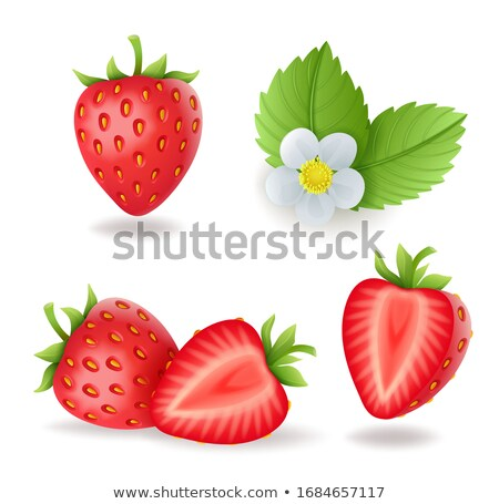 Realistic sweet strawberry set with leaves and flowers, fresh red berries, isolated on white backgro Stock photo © MarySan