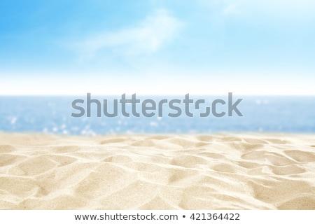 Plaży szczęśliwy kochający starszy ruchu Zdjęcia stock © pressmaster