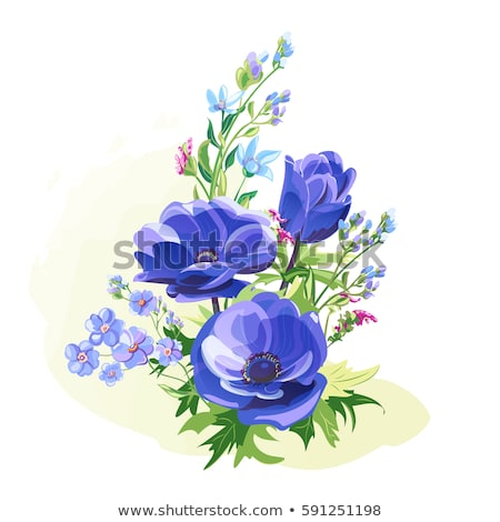 digital vector blue flowers set stock photo © frimufilms