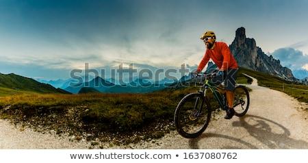 Uomo equitazione elettrici mountain bike alpi foresta Foto d'archivio © AndreyPopov
