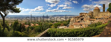 Tower and gate in San Gimignano, Italy stock photo © borisb17