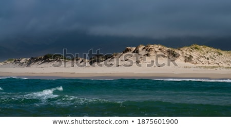 Sunlight hits dunes Stock photo © jsnover