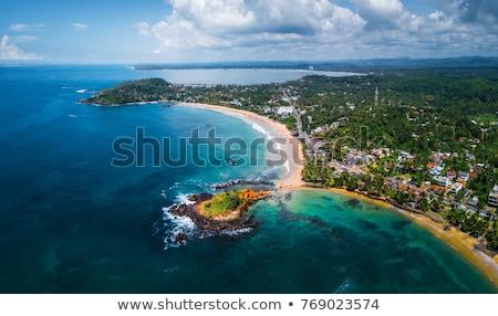 Tengerpart Sri Lanka trópusi édenkert idilli nyár Stock fotó © dmitry_rukhlenko