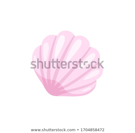 Summer Seashell, Beach Conch Isolated Icon Closeup Stock photo © robuart