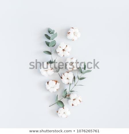 カラフル 綿 広場 テクスチャ 背景 ファブリック ストックフォト © Ansonstock