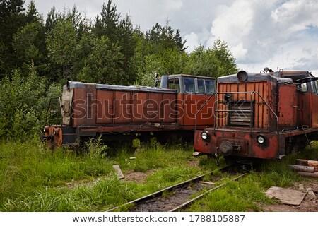 miniatura · ferrovia · isolado · trilho · parque · de · diversões · crianças - foto stock © prill