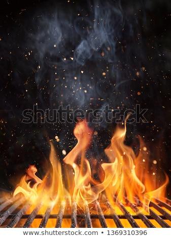 Aprire il fuoco carbone di legna barbecue primo piano barbeque acciaio Foto d'archivio © albund