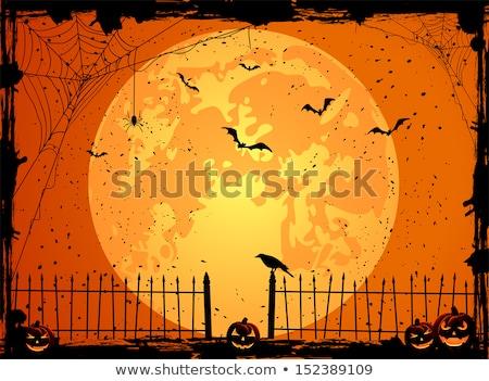 koszos · halloween · hold · sütőtök · kisértetjárta · ház - stock fotó © wad