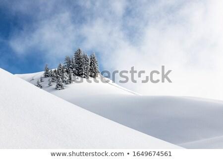 Zdjęcia stock: świeże · śniegu · tle · bezpieczeństwa · przemysłowych · biały