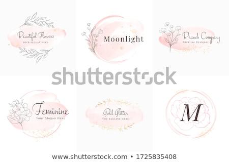 Femininity Stock photo © pressmaster