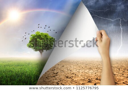 Jó Föld 3d render facebook remek kéz Stock fotó © Florisvis