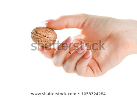 Human hand holding three walnut Stock photo © lunamarina