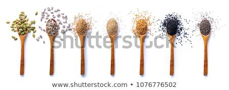 Gezonde zaden foto houten schep Stockfoto © MamaMia