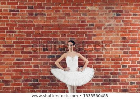 vrouw · lingerie · poseren · kruk · mooie · slank - stockfoto © lithian