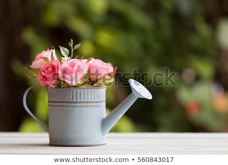 virágok · locsolókanna · klasszikus · hatás · fénykép · tavaszi · virágok - stock fotó © frannyanne
