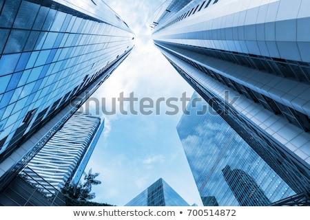 business · centrum · vector · afbeelding · jonge · zakenvrouw - stockfoto © anacubo