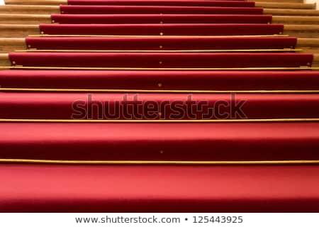 Stok fotoğraf: Kırmızı · halı · ahşap · adımlar · ev · zemin · halı