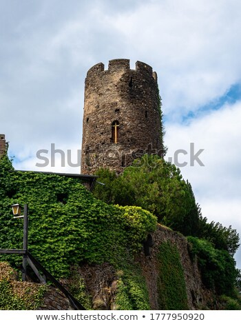 Stock photo: Castle with ivy