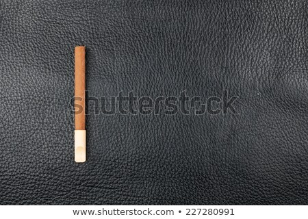 Cigar with a wooden mouthpiece lies on genuine leather Stock photo © alekleks