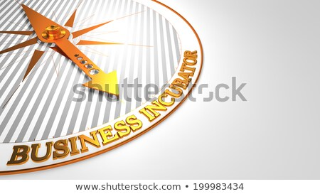 business startup   golden compass needle stock photo © tashatuvango