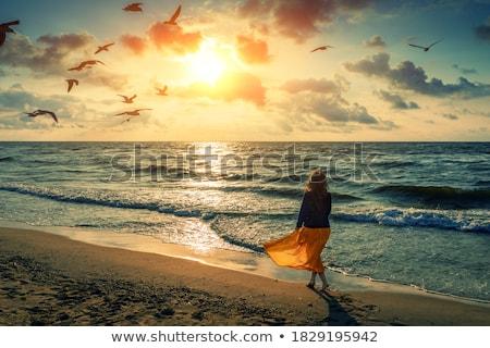 Vrouw zee nat rok permanente water Stockfoto © Novic