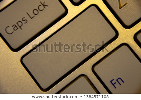 keys with word ads on golden label stock photo © tashatuvango