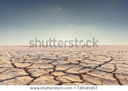 Droogte grond scheuren geen heet water gebrek Stockfoto © scenery1