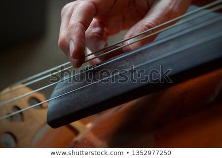 Cselló közelkép hegedű zene háttér művészet Stock fotó © FreeProd