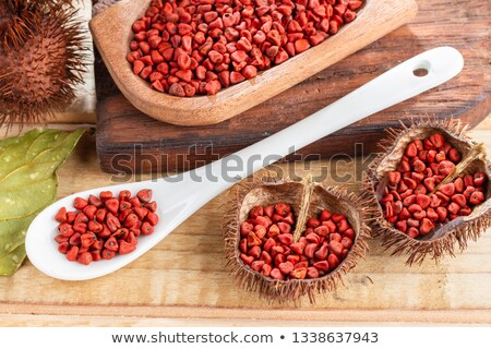 achiote seasoning annatto seed mexico popular stock photo © lunamarina