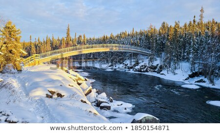 Icicles and snow near flowing water Stock photo © Juhku