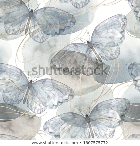 Mixed butterflies Stock photo © bluering