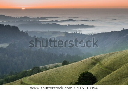 Santa Cruz Mountains and Fog Above The Pacific Ocean. Stock photo © yhelfman