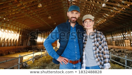 two farm workers with flock of sheep stock photo © monkey_business