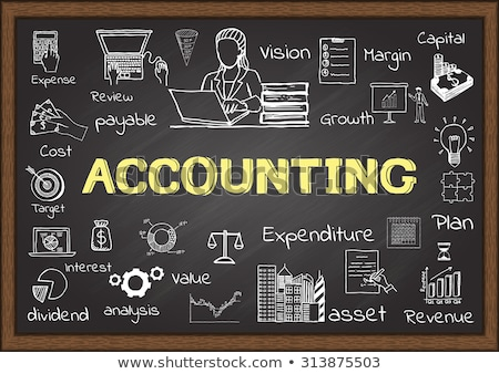 Accounting on Chalkboard with Doodle Icons. Stock photo © tashatuvango