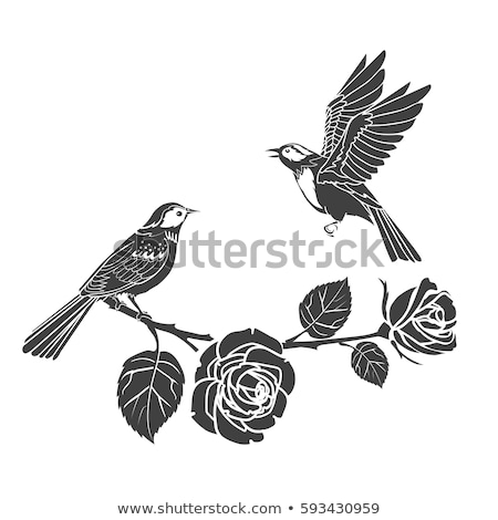 Vogels postzegels collectie kleurrijk stempel tropische Stockfoto © FER737NG