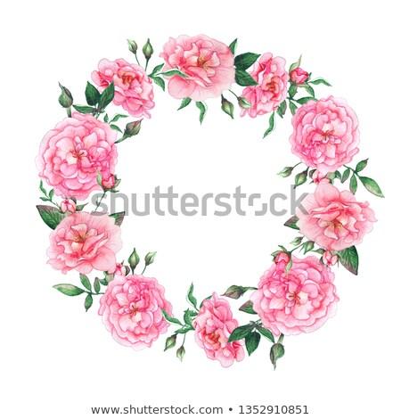 набор шаблон цветок декоративный дизайна Сток-фото © SArts