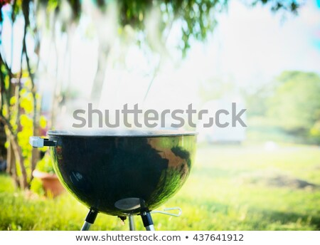 Grill with smoke over summer outdoor nature in garden Stock photo © JanPietruszka