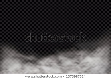 Transparente blanco vector niebla diseno naturales Foto stock © kostins