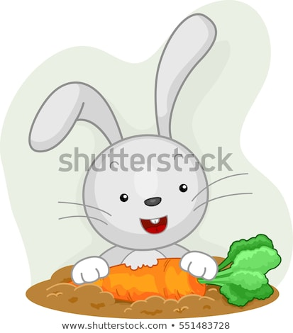 Konijn aandachtig eten wortel tuin illustratie Stockfoto © lenm