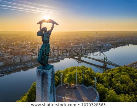丘 ブダペスト 表示 橋 水 雲 ストックフォト © Givaga