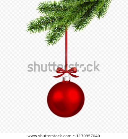 Christmas Twigs Red Baubles Transparent Stock photo © limbi007