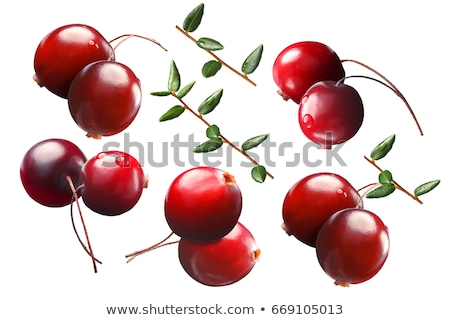 Cranberry by two with stalks, leaves, paths Stock photo © maxsol7