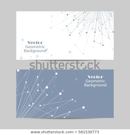 Zestaw poziomy banery biologii edukacji nauki Zdjęcia stock © netkov1