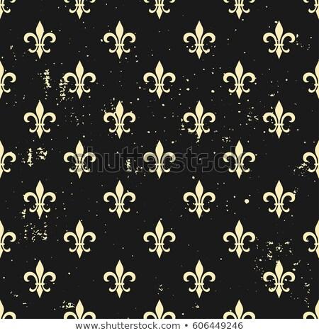 Klasszikus textúra minta vektor virágmintás dísz Stock fotó © frimufilms