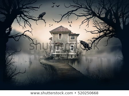 haunted house by the lake at night stock photo © colematt